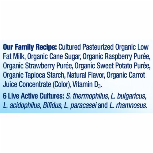 Stonyfield® Organic Kids Very Berry Yogurt Smoothie Perspective: bottom