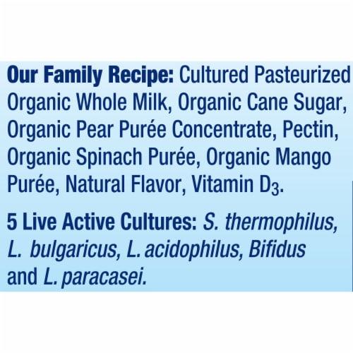 Stonyfield® Organic Pear Spinach Mango Whole Milk Yogurt Perspective: bottom