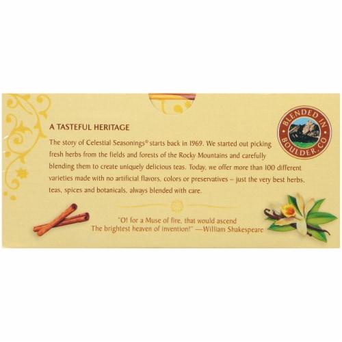 Celestial Seasonings Fireside Vanilla Spice Herbal Tea Bags Perspective: bottom