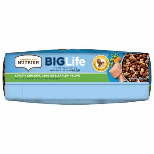 Rachael Ray Nutrish Big Life Savory Chicken Veggie & Barley Recipe Dry Dog Food Perspective: bottom