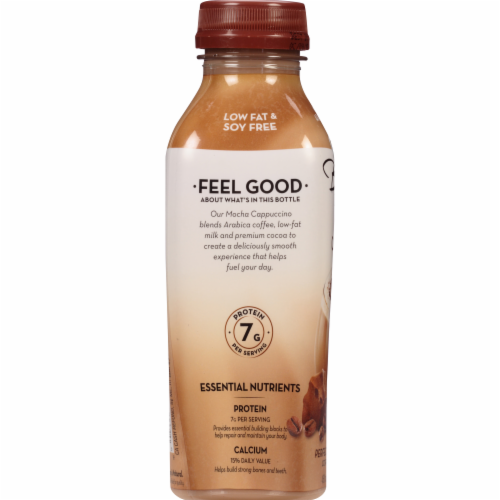 Bolthouse Farms Mocha Cappucino Protein Coffee Beverage Perspective: bottom