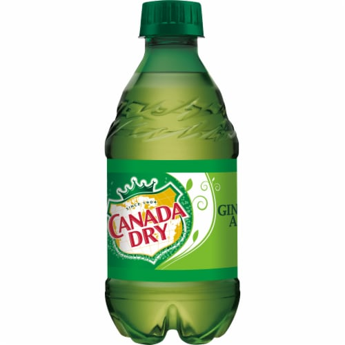 Canada Dry Ginger Ale Soda Perspective: bottom