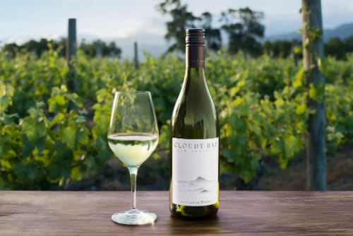 Cloudy Bay Sauvignon Blanc New Zealand White Wine Perspective: bottom