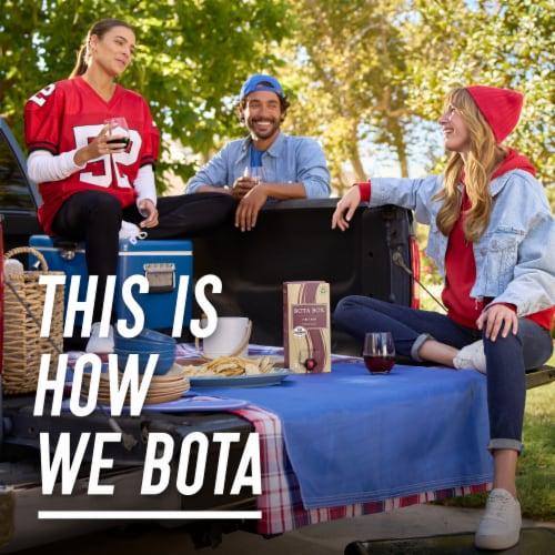 Bota Box®  Pinot Noir California Red Wine Perspective: bottom