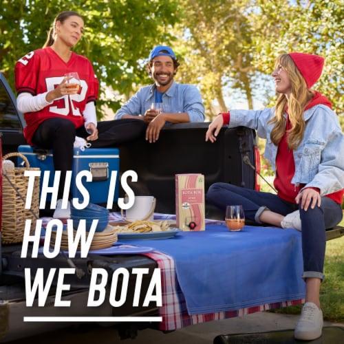 Bota Box Dry Rose Wine Perspective: bottom