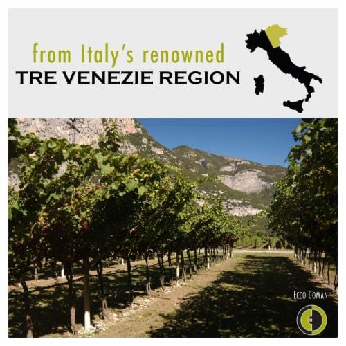 Ecco Domani Pinot Grigio White Wine Perspective: bottom