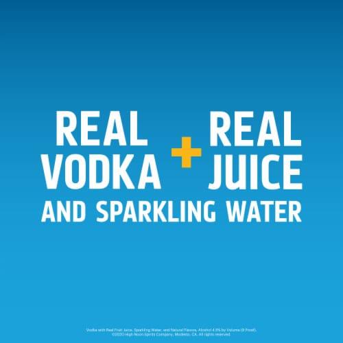 High Noon Grapefruit Vodka Hard Seltzer 4 Single Serve 355ml Cans Perspective: bottom