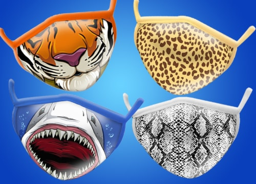 Wild Republic Smiles Assorted Adult Masks Perspective: bottom
