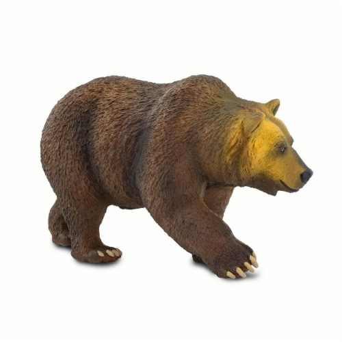 Grizzly Bear Perspective: bottom