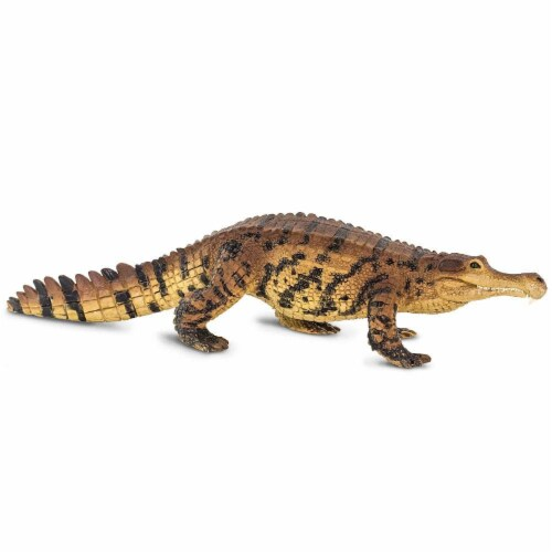 Sarcosuchus Toy Perspective: bottom