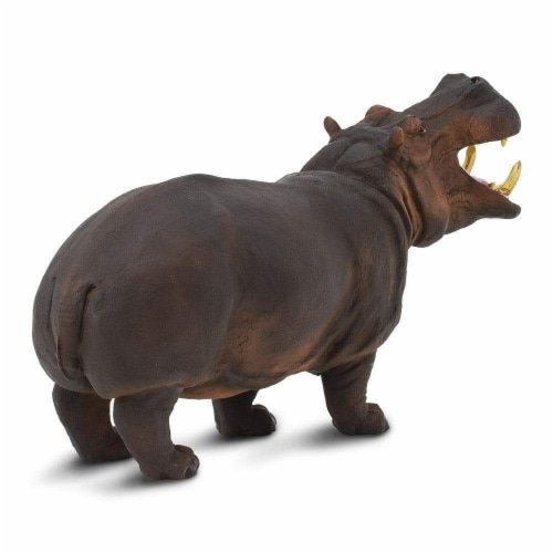 Hippopotamus Toy Perspective: bottom