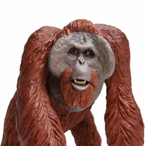 Bornean Orangutan Toy Perspective: bottom