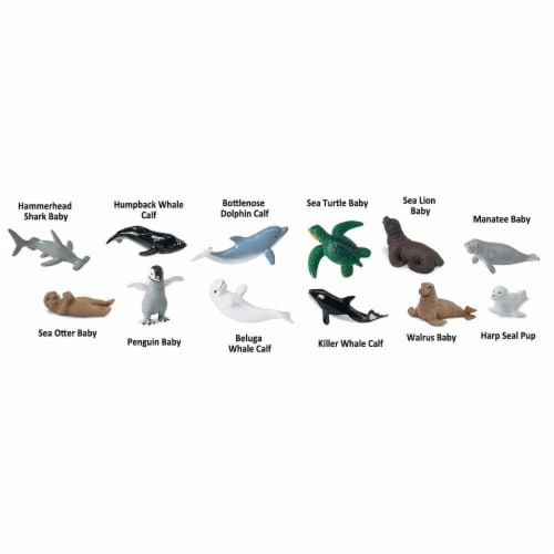 Baby Sea Life TOOB Perspective: bottom