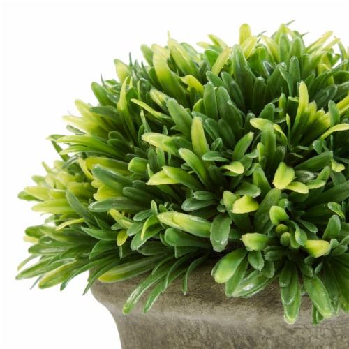 Set of 3 Artificial Podocarpus Grass Plant in Concrete Pot 7.5 Inch Decorative Faux Indoor Perspective: bottom