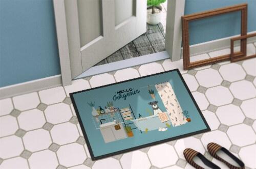 Salt and Pepper Miniature Schnauzer in Bathtub Indoor or Outdoor Mat 24x36 Perspective: bottom