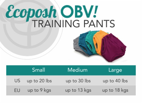 Ecoposh OBV Training Pants Caribbean Small 1T/2T Perspective: bottom