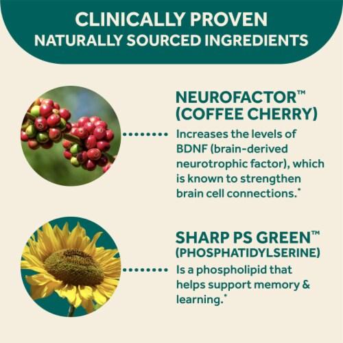 Neuriva Original Grape Flavored Brain Performance Gummies Perspective: bottom