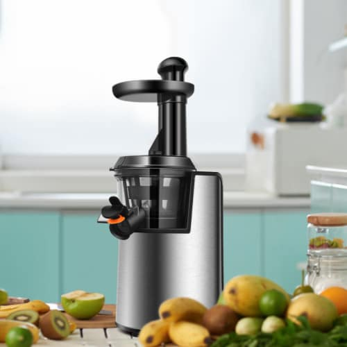 Costway Slow Masticating Juicer Cold Press Stainless Steel w/ Brush Perspective: bottom