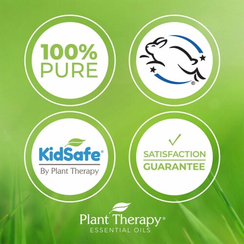 Plant Therapy 10 mL Essential Oil Roll On Blends Set, 1/3 Oz, KidSafe Top 3 Perspective: bottom