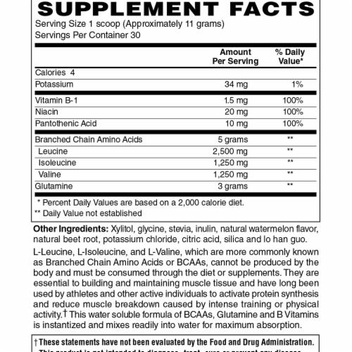 Holly Hill Health Foods, BCAA Powder, Watermelon Flavor, 11.65 Ounces Perspective: bottom