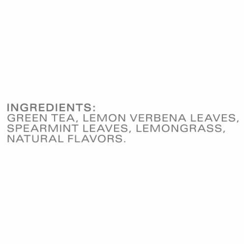 Tazo Zen Green Tea Bags Perspective: bottom