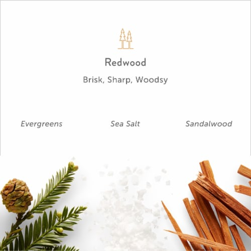 Harry's Redwood Bar Soap Perspective: bottom