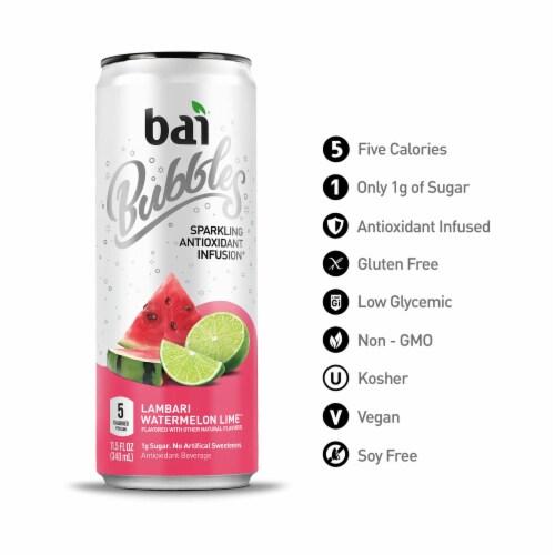 Bai Bubbles Lambari Watermelon Lime Sparkling Beverage Perspective: bottom