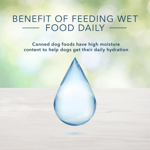Blue Buffalo Freedom Grain-Free Recipe Dog Food Perspective: bottom