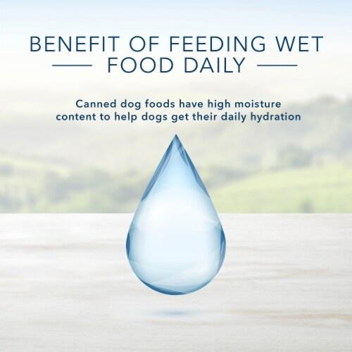 Blue Buffalo Family Favorite Recipes Backyard BBQ Dinner Wet Dog Food Perspective: bottom