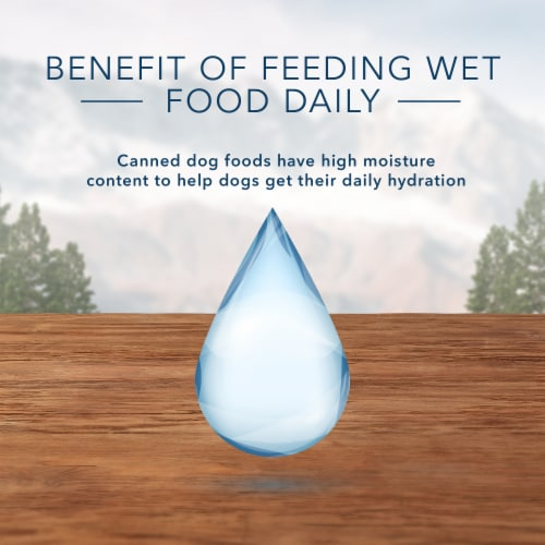 Blue Buffalo Wilderness Beef Grill Trail Trays Wet Dog Food Perspective: bottom