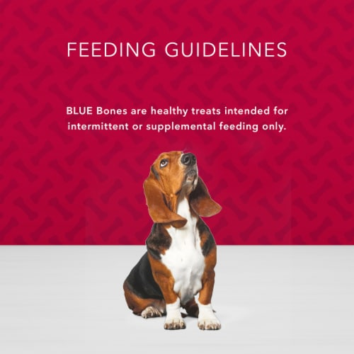 Blue Buffalo Bones Beef Flavored Mini Dog Biscuits Perspective: bottom