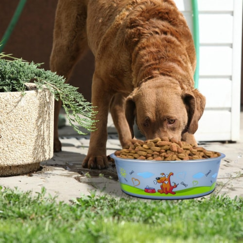 Multi Print Stainless Steel Dog Bowl By Bella N Chaser Perspective: bottom