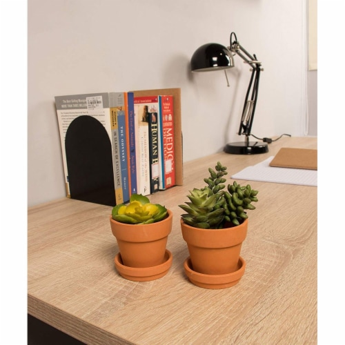 12 Pack Small Terra Cotta Pots with Saucers for Indoor and Outdoor, Brown, 2.7 x 2.5 inches Perspective: bottom