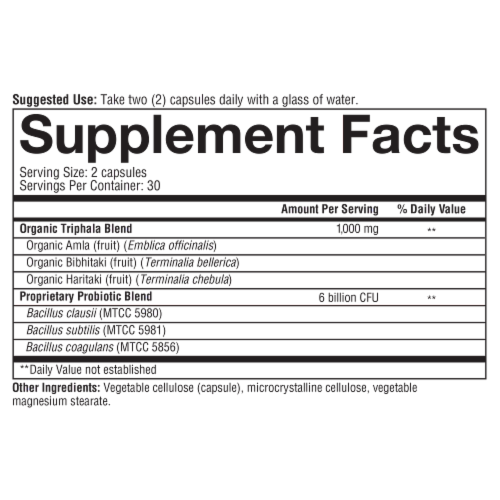 Youtheory® Spore Probiotic Plus Prebiotic Powder Perspective: bottom
