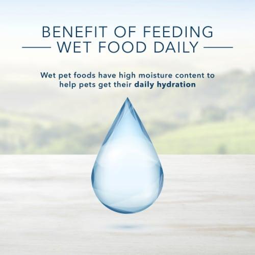 Blue Buffalo Homestyle Recipe Chicken Dinner Flavor Senior Wet Dog Food Perspective: bottom