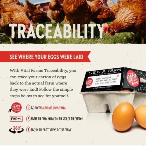Vital Farms Pasture-Raised Grade A Large Eggs Perspective: bottom