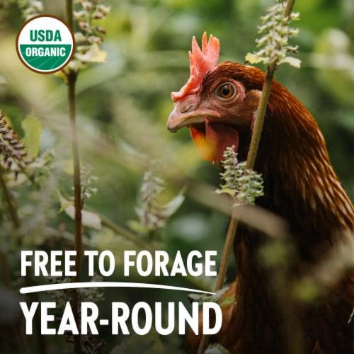 Vital Farms Organic Pasture-Raised Grade A Large Eggs Perspective: bottom