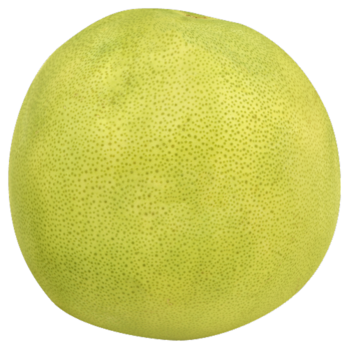 Pummelo Grapefruit Perspective: front