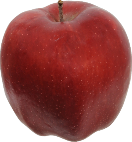 Apple - Red Delicious - Large Perspective: front