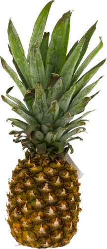 Small Pineapple Perspective: front