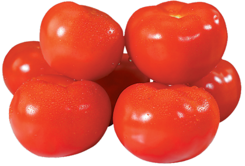 Red Tomatoes Perspective: front