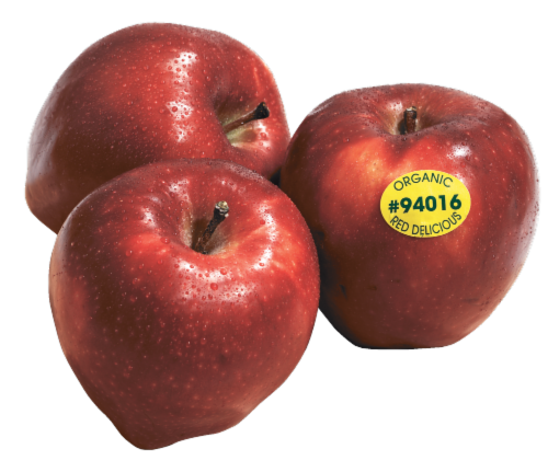 Cortland Apples Perspective: front