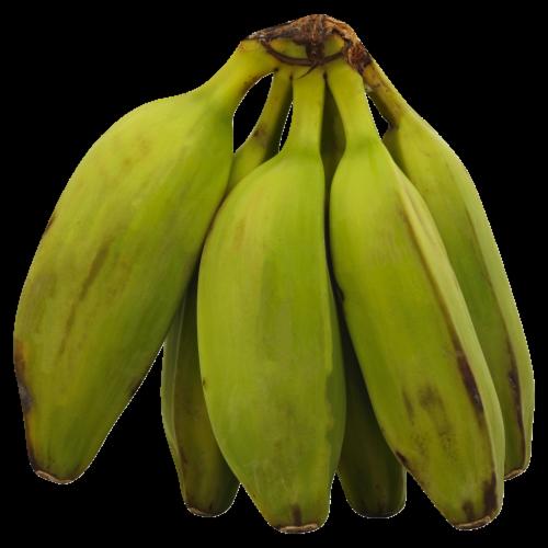 Frieda's Burro Bananas Perspective: front
