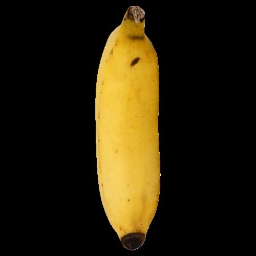 Manzano Bananas Perspective: front