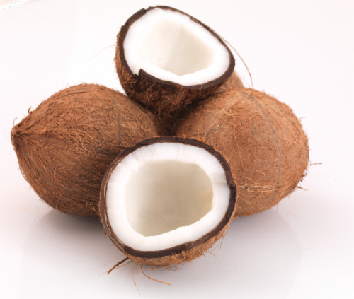Coconut Perspective: front