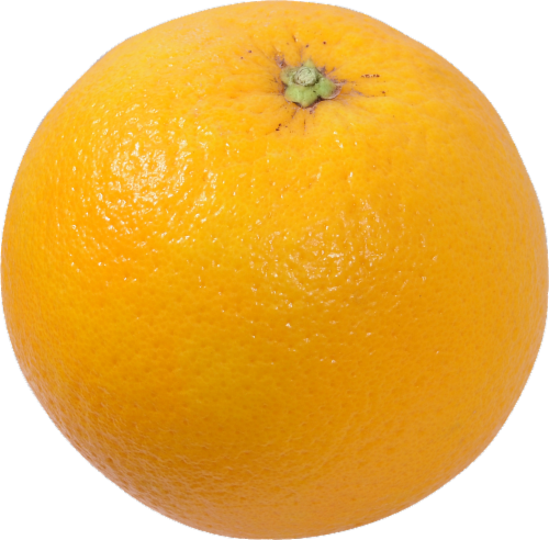 Temple Oranges Perspective: front