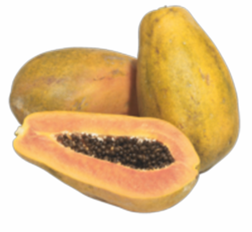 Red Star Papayas Perspective: front
