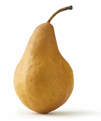 Bosc Pear Perspective: front
