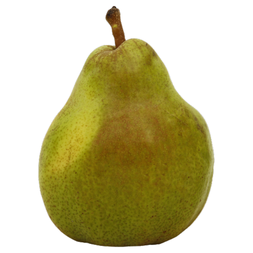 Comice Pears Perspective: front