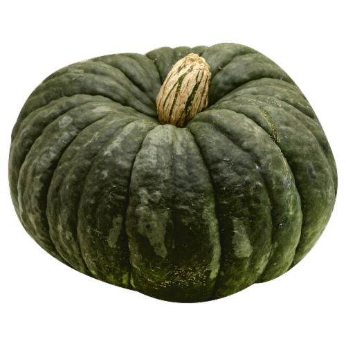 Large Gourds Perspective: front